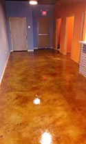 Decorative Concrete Design for Commercial Space