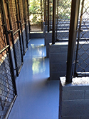 Fenced Stalls with Outdoor Epoxy Flake Flooring
